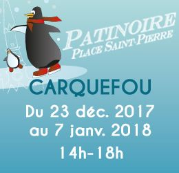 Carquefou patinoire dec 2017